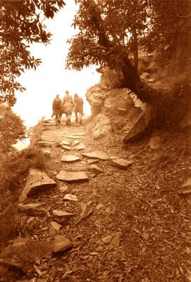 Dharamsala Hike
