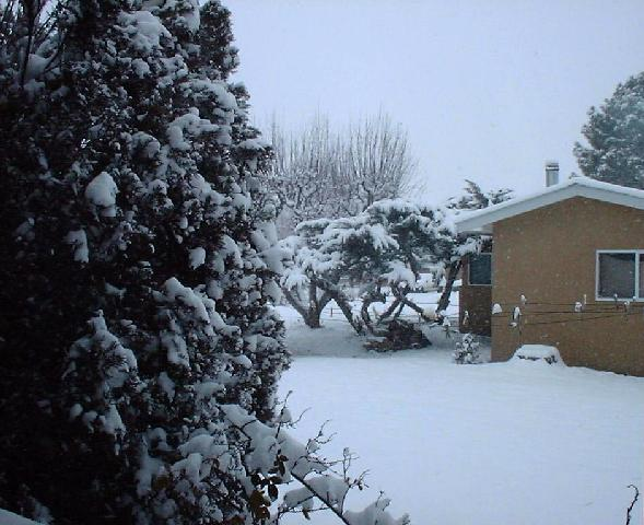 It's Snowing in Espanola!