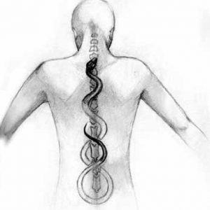 Align Your Spine to Feel Just Fine!